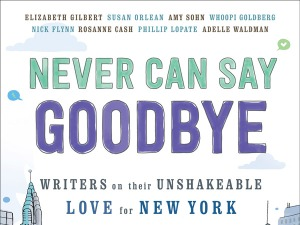 Never-Can-Say-Goodbye-cover